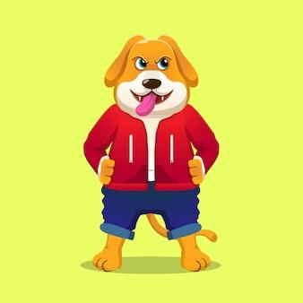 フードジャケット付き犬