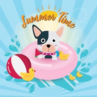 Doggy Swimming