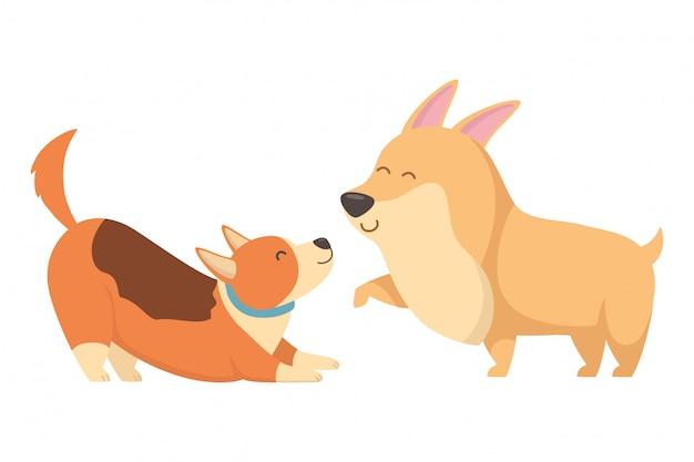 Dogs of cartoons