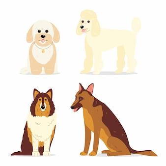 ミニプードルコリージャーマンシェパードやマルプーなど、さまざまな品種の犬を集めた犬たち Premiumベクター