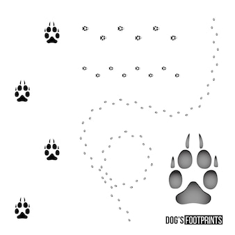 Dogs footprint set isolated on white background vector design element