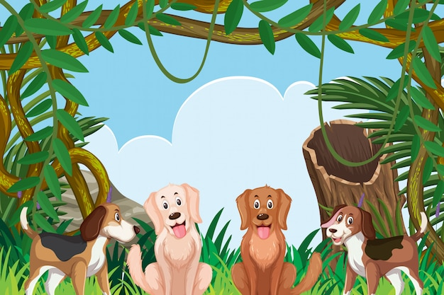 Dogs in jungle scene