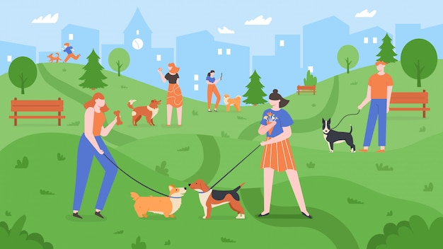 Dogs at park. pets playing in dog park, people walk and play with dogs in outdoor yard, urban dog park landscape colorful  illustration. pet owners training puppies, strolling together