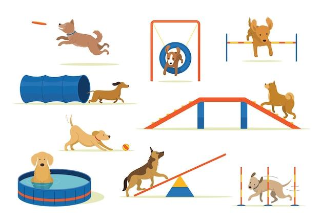 Собаки играют на детской площадке с набором оборудования