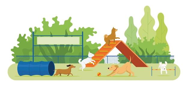 Собаки играют на детской площадке с игрушками и оборудованием