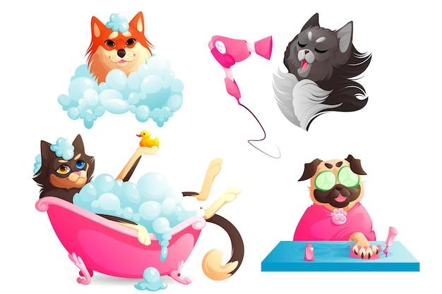 Spa e servizio di toelettatura per cani cuccioli divertenti che si godono le procedure del salone animali domestici che asciugano i capelli con mani...