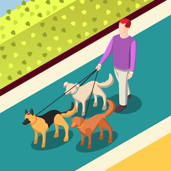 Dogs walking isometric illustration