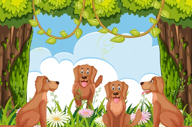 Dogs in woods scene