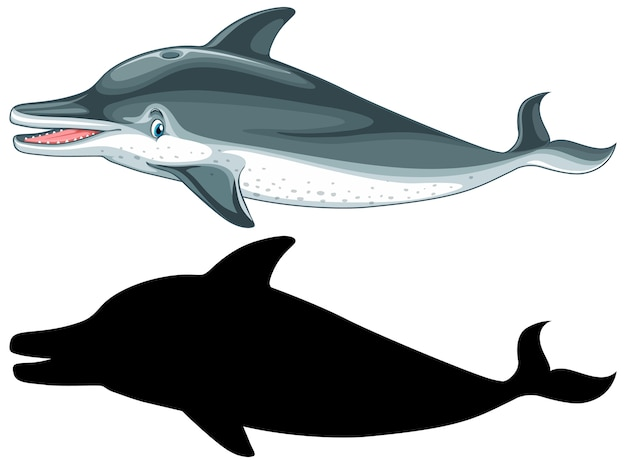 Dolphin characters and its silhouette on white background