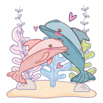 Dolphin couple animal with seaweed plants