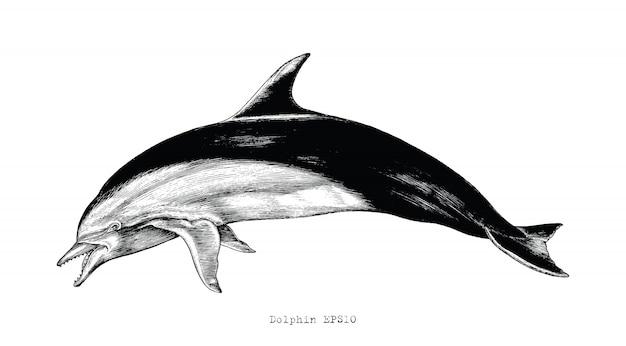 イルカ手描きのヴィンテージ彫刻イラストクリップアート