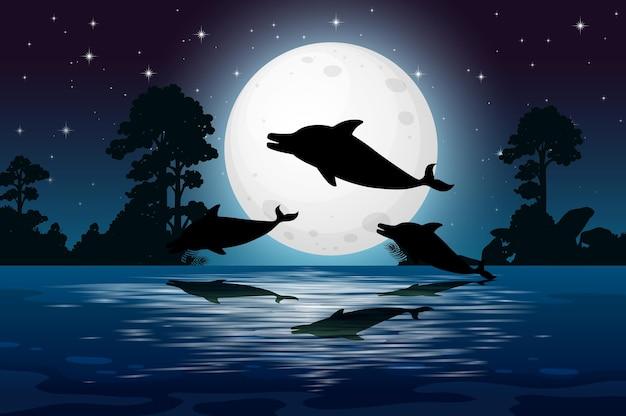 Дельфин в силуэт сцены природы
