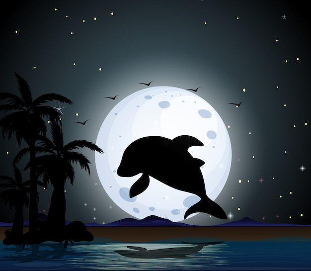 Dolphin in nature scene silhouette