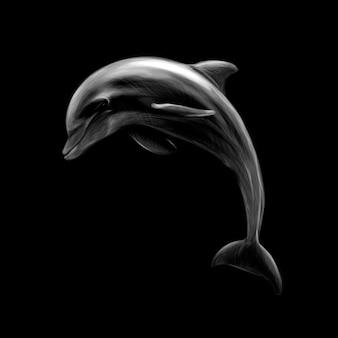 黒の背景にイルカ、手描き。ベクトルイラスト