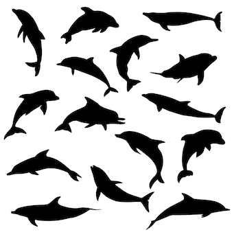 Dolphin sea animals silhouette clip art vector