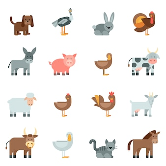 Domestic animal flat icons set