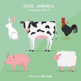 Domestic and cute animal collection