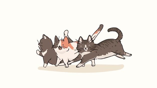 I gatti domestici shorthair e munchkin scarabocchiano l'elemento vettoriale