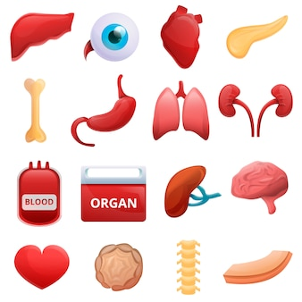 Donate organs set, cartoon style