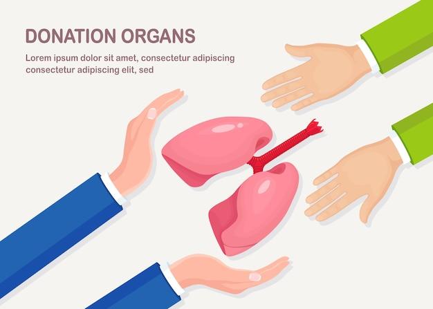 寄付臓器。医師の手は移植のためにドナーの肺を保持します