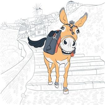 Donkey in the village of oia, santorini, greece