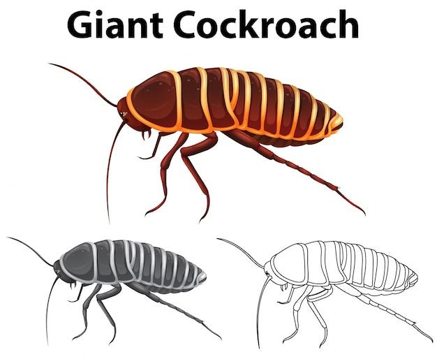 Животное doodle для гигантского таракана Бесплатные векторы