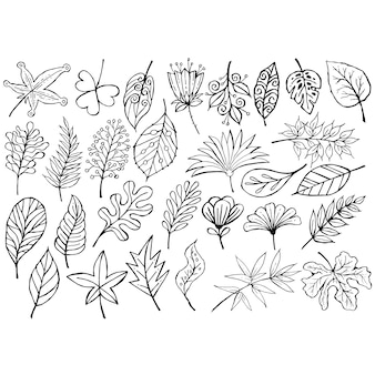 Doodle black and white leaves set