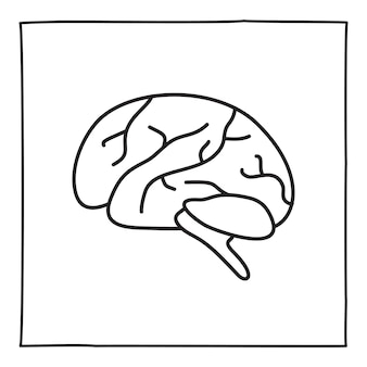 Doodle brain icon or logo, hand drawn with thin black line. isolated on white background. vector illustration
