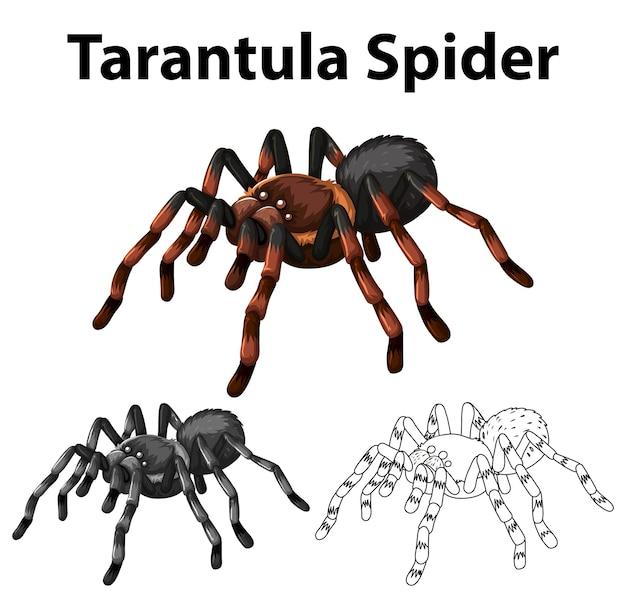 Каракули персонаж паука тарантул