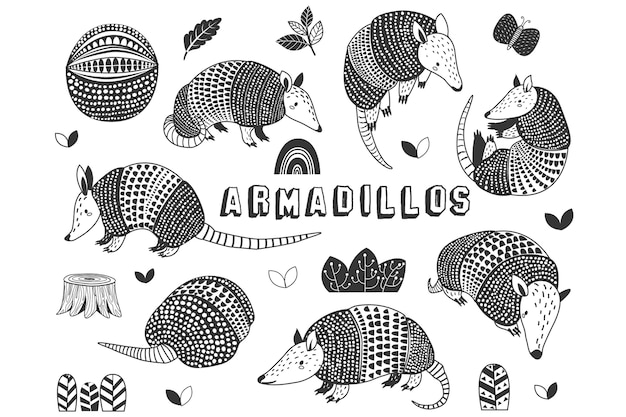 Doodle cute little armadillos collections set