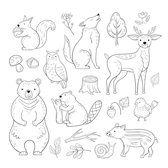 Doodle forest animals. woodland cute baby animal squirrel wolf owl bear deer snail childrens sketch  hand drawn set