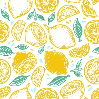 Doodle hand drawn lime and lemon seamless pattern. tropical summer citrus fruit vintage style.