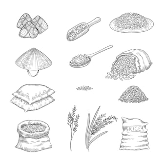 Doodle rice. agricultural nature collection of rice sacks grains hand drawn set.