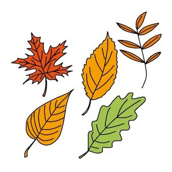 白い孤立した背景に紅葉のベクトルセットを落書き。ポスター、キッチンテキスタイル、衣類、ウェブサイトのデザイン