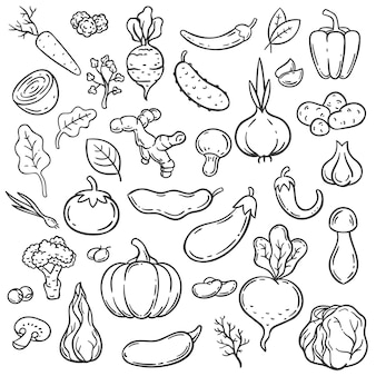 Каракули овощи. рука нарисованные различные морковь, лук и огурец. имбирь, грибы и чеснок, капуста и набор векторных овощей вегетарианской еды. капуста и баклажаны, огурцы и перец иллюстрации