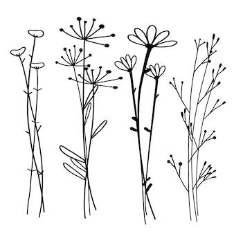 Нарисованный рукой ботанический комплект, doodle флористический элемент, иллюстрация вектора.
