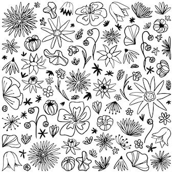 Коллекция рисунков абстрактных цветов. рука нарисованные векторные иллюстрации. винтажные рисунки черный контур, изолированные на белом. простые контурные ботанические элементы для дизайна, открыток, печати, декора, наклеек.