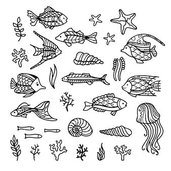 물고기 바다 식물 조류 껍질 바다 별과 해파리의 낙서 세트
