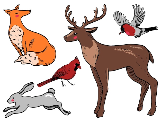 Doodles set of winter animals. deer, hare, fox, bullfinch, northern cardinal. hand drawn vector illustrations collection. colored elements isolated on white for design, decor, prints, stickers, cards.