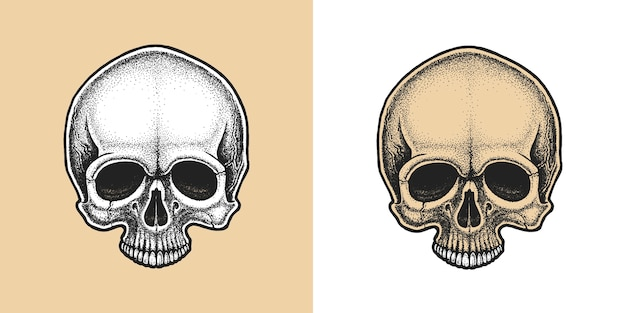 Dotwork styled skull.