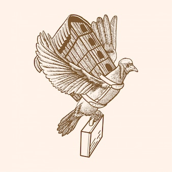 Dove traveling illustration