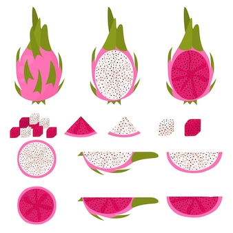 Dragon fruit set. slice, piece, half and a whole fruit close-up. white and pink variety pitahaya. asian cactus fruit. vector illustration.