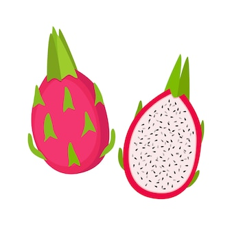 Dragon fruit, whole and half, vector illustration