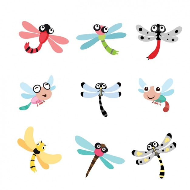 dragonfly vectors photos and psd files free download rh freepik com dragonfly vector image dragonfly vector art free
