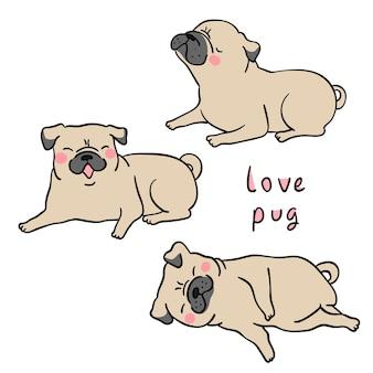 Draw brown pug dog on white