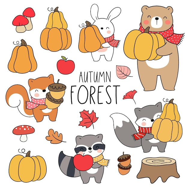 Draw vector illustration character design collection woodland for autumn and fall cartoon style