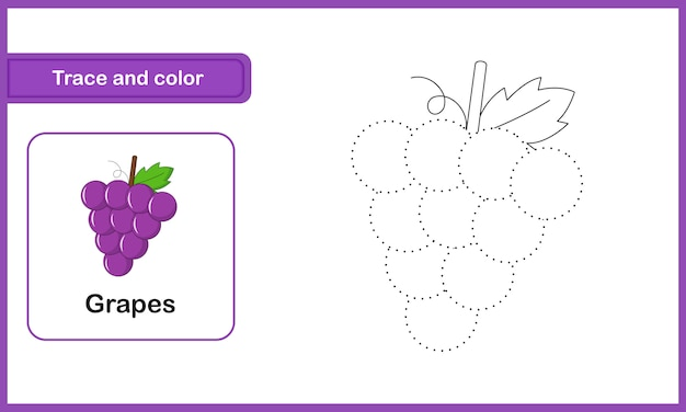 Drawing and vocabulary worksheet, trace and colour : grapes