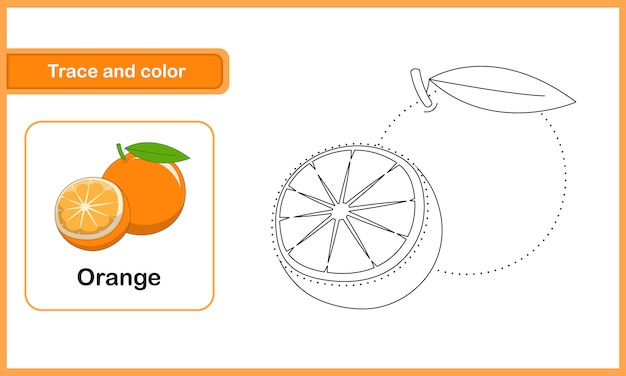 Drawing and vocabulary worksheet, trace and colour : orange