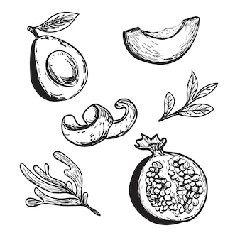 그려진 아보카도 석류 오렌지 껍질 세트 과일 그림 주스 포장 디자인