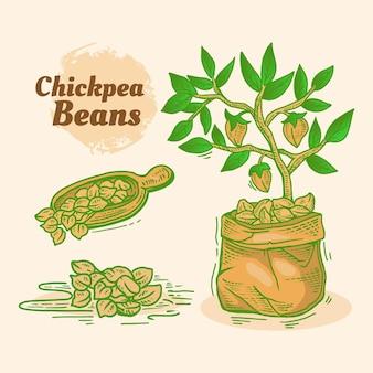 ひよこ豆と植物を描いた